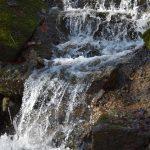 Wasserfall - Bärensee Stuttgart